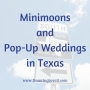 Artwork for #151 - Minimoons and Pop-Up Weddings in Texas