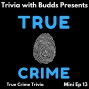 Artwork for Mini Ep 13. True Crime Trivia