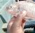 Ugandan Fish Farmer Produces Fresh Tilapia & Encourages Small Farms show art