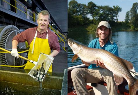 Atlantic Salmon  and the Aquatic Research Laboratory HFJ No. 98