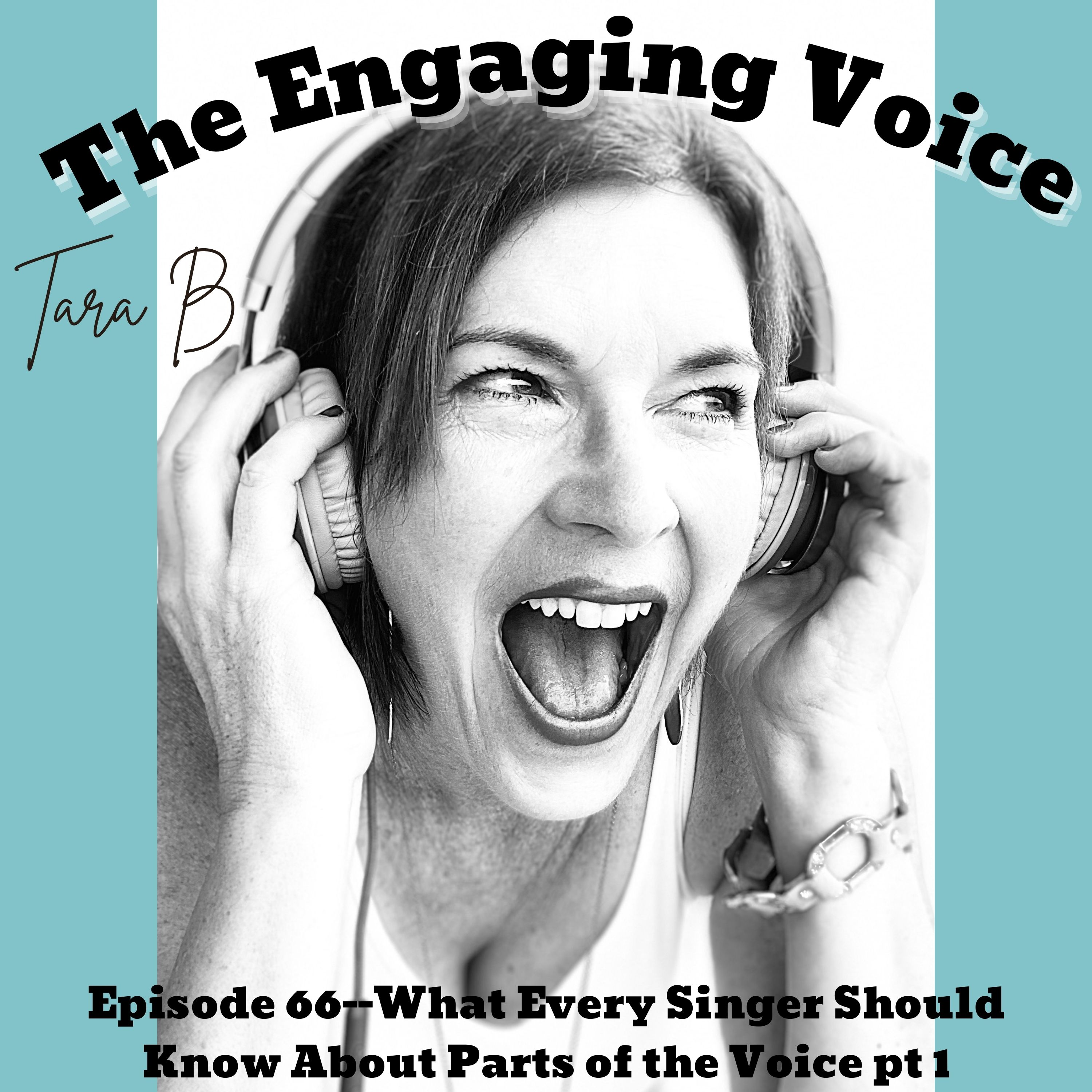 Tara B   What Every Singer Should Know About Parts of the Voice pt 1