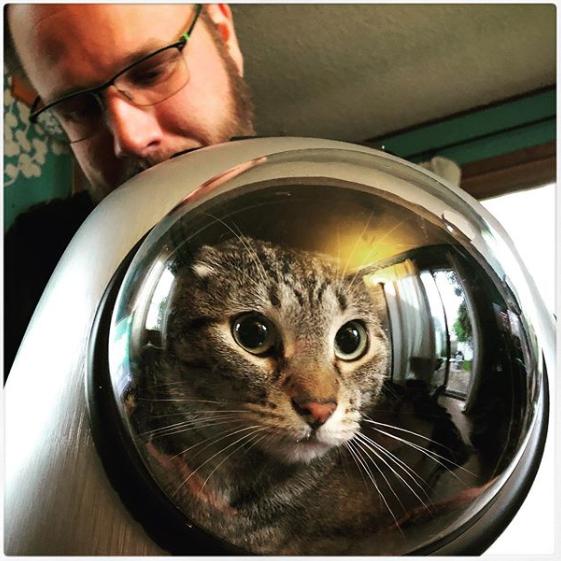 Ben's Space Cat