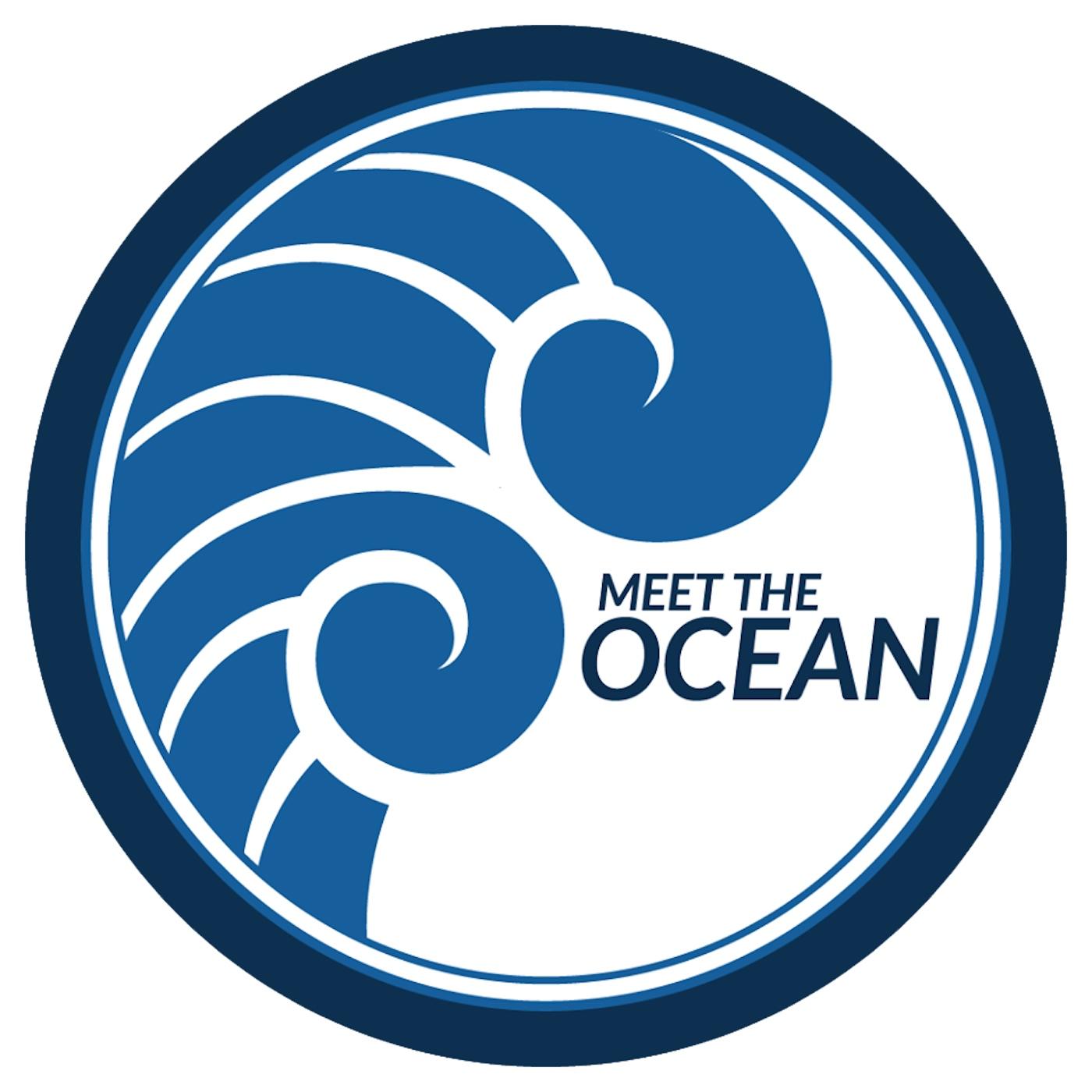 Meet the Ocean show art
