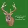 Artwork for Rut Functional Hunting Step3 creating the Scrapes HFJ No.131