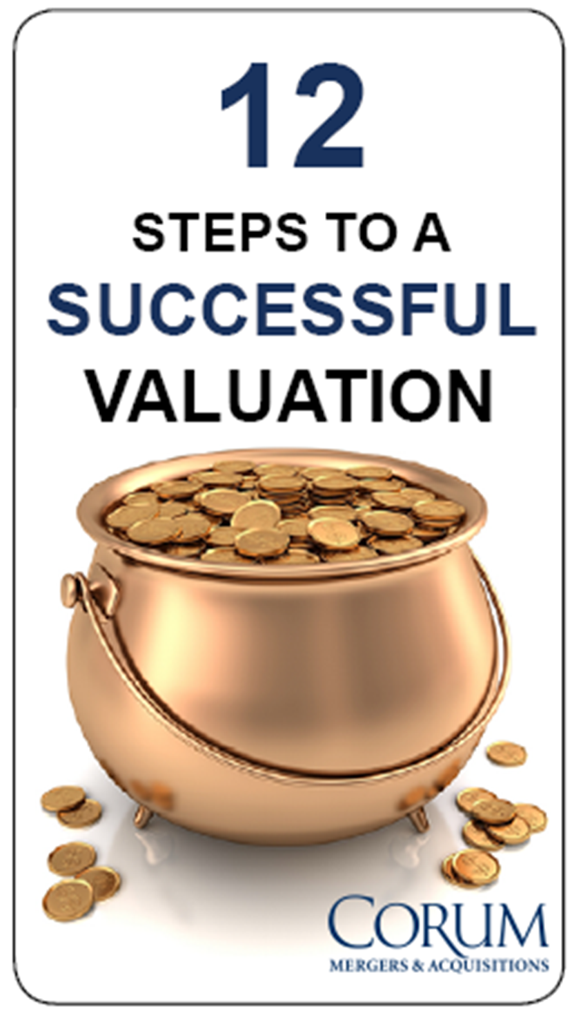 Tech M&A Monthly: 12 Tips for a Successful Valuation #1 & 2