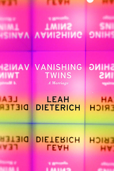 Vanishing Twins Cover