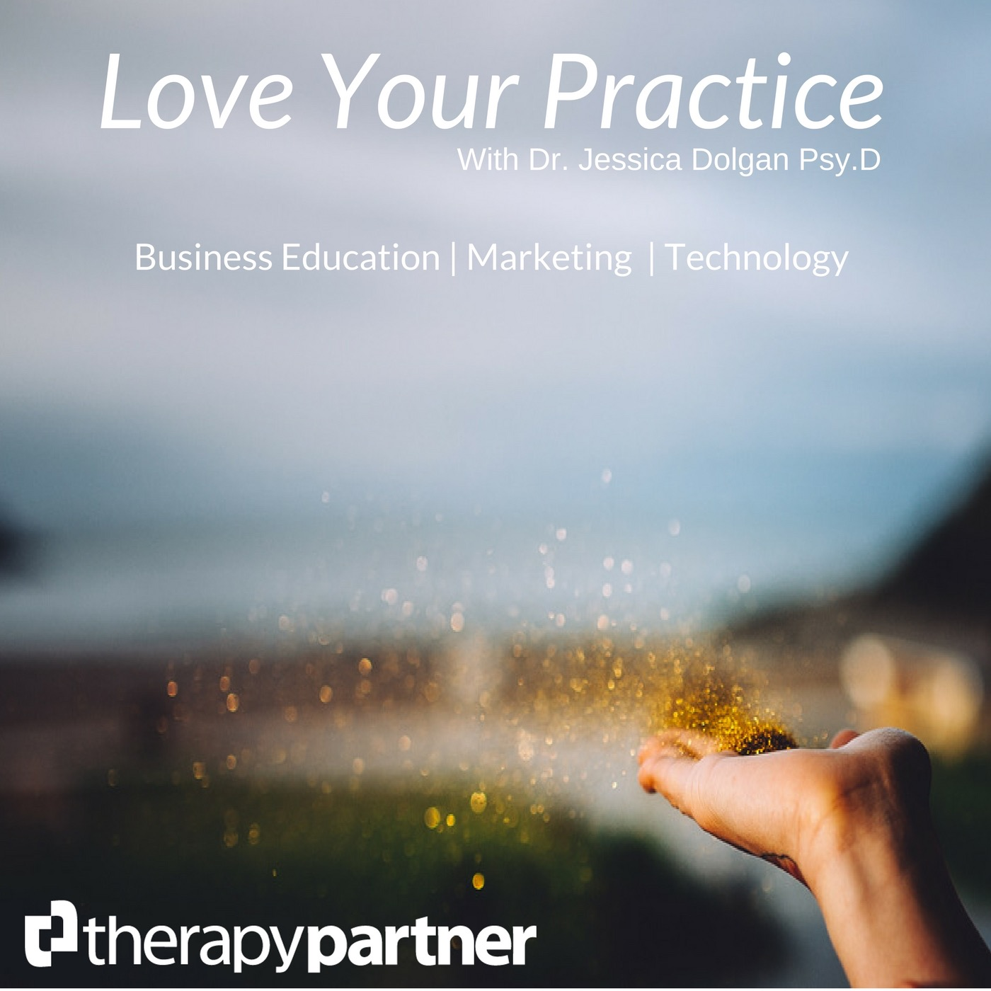 Love Your Practice Podcast from Therapy Partner | Marketing | Business Strategy | Small Business Growth show art