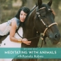 Artwork for 004: Meditating with Animals with Pamela Robins