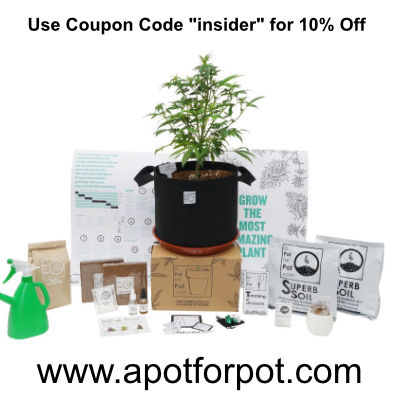 a pot for pot growing bundle