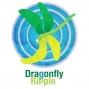 Artwork for Dragonfly Ripple: Deep Space Nine, part 1