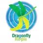 Artwork for Dragonfly Ripple: Quantum Leap
