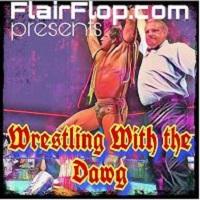 Artwork for Episode 114 - Randy Savage vs. Ultimate Warrior - Retirement Match - WWF WrestleMania VII