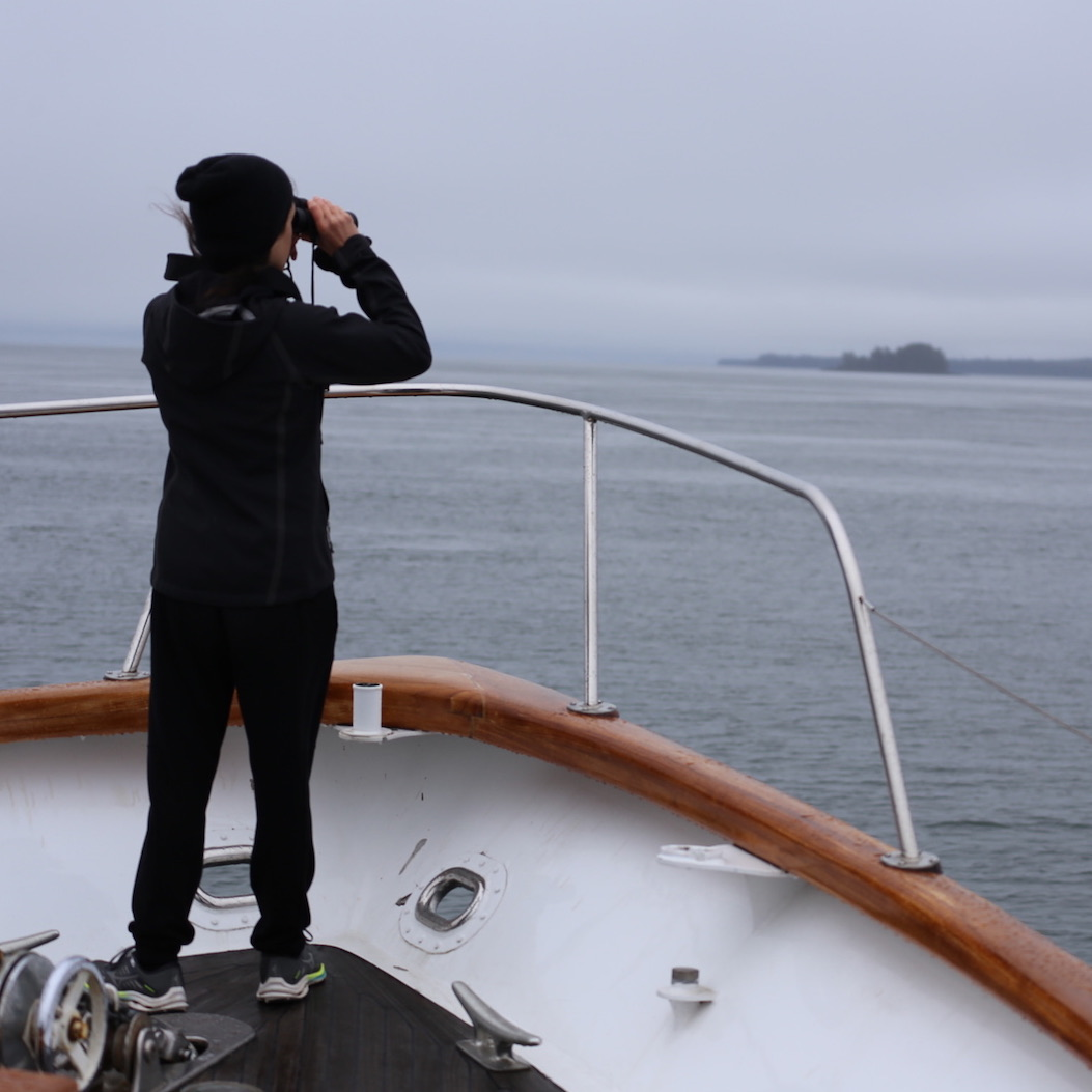 Episode 375: Sea Adventure to Alaska