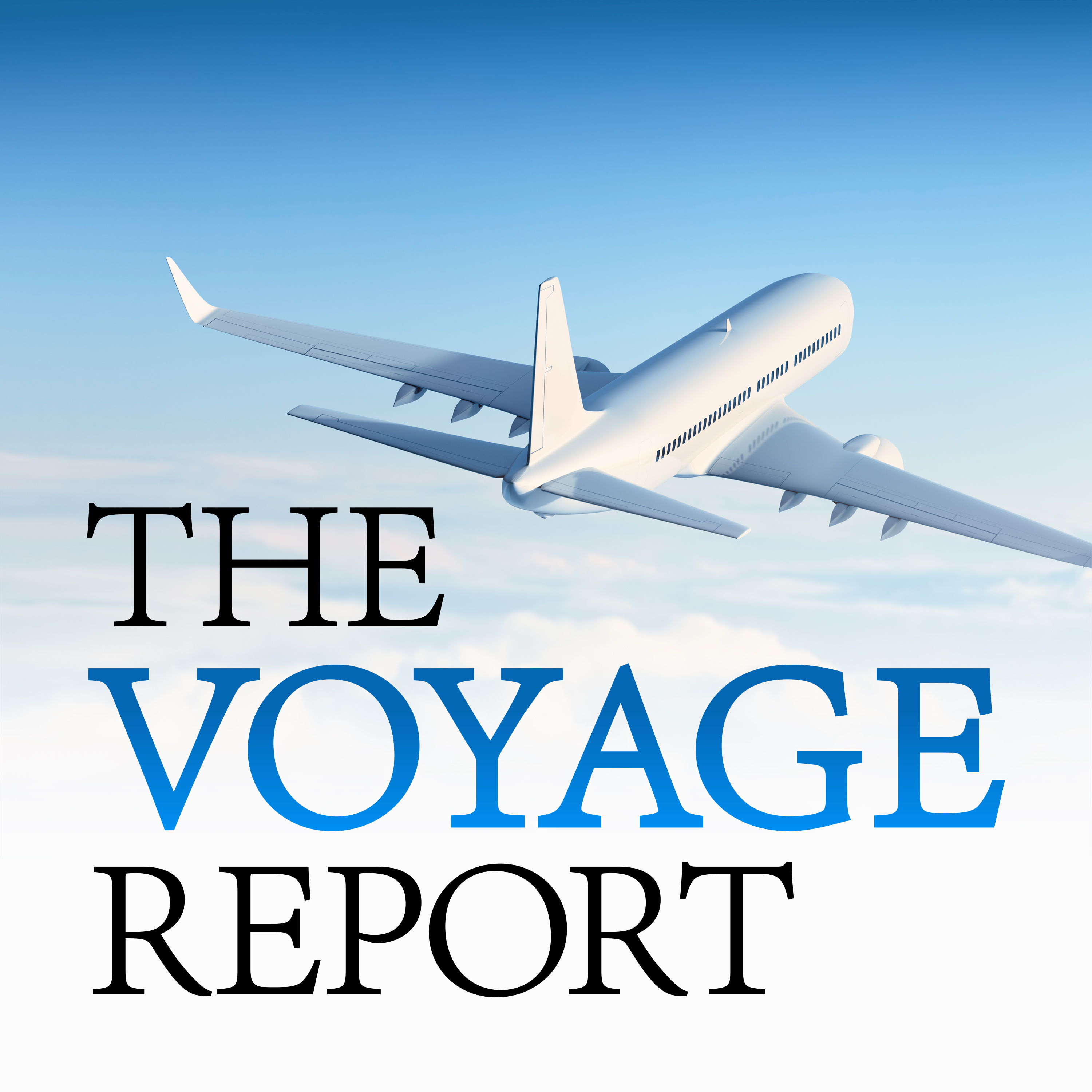 The Voyage Report show art