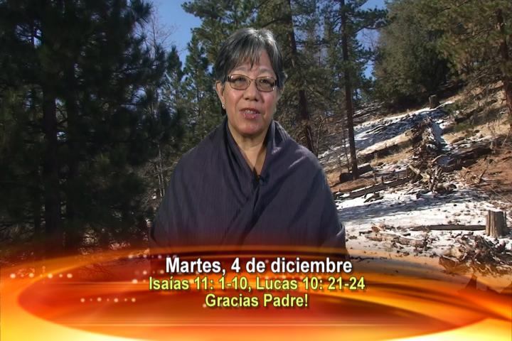 Artwork for Dios te Habla con Lidia Mendoza; Tema el hoy:GRACIAS PADRE!