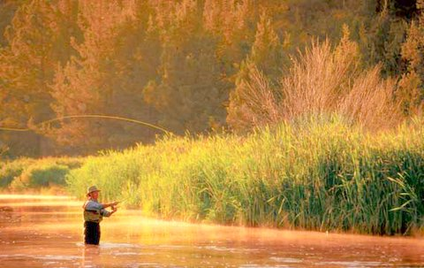 The spirituality of Fly Fishing: A Christian Perspective of the Journey