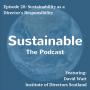 Artwork for 20: Sustainability as a Director's Responsibility - David Watt, Institute of Directors Scotland
