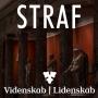 Artwork for Videnskab Lidenskab#4 STRAF