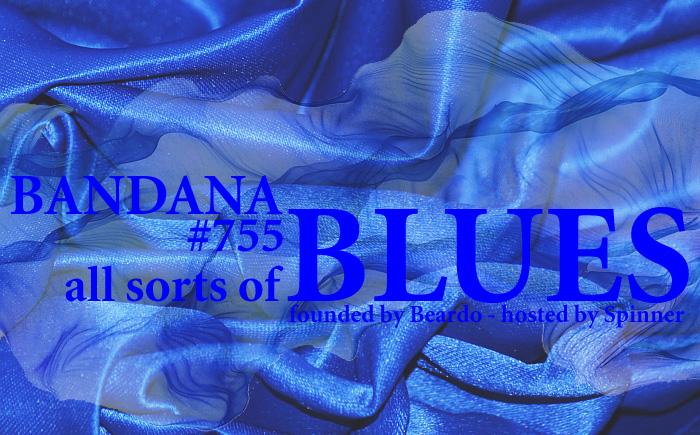 7e5d808eccf Bandana Blues with Beardo   Spinner