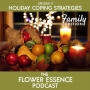 Artwork for FEP11 Family and The Holidays