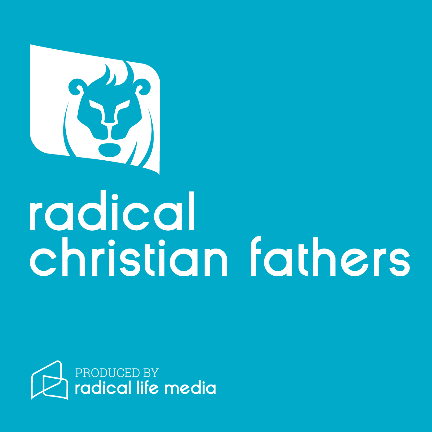 Encouraging Christian Fathers: Parenting Advice for Men With Vision show art