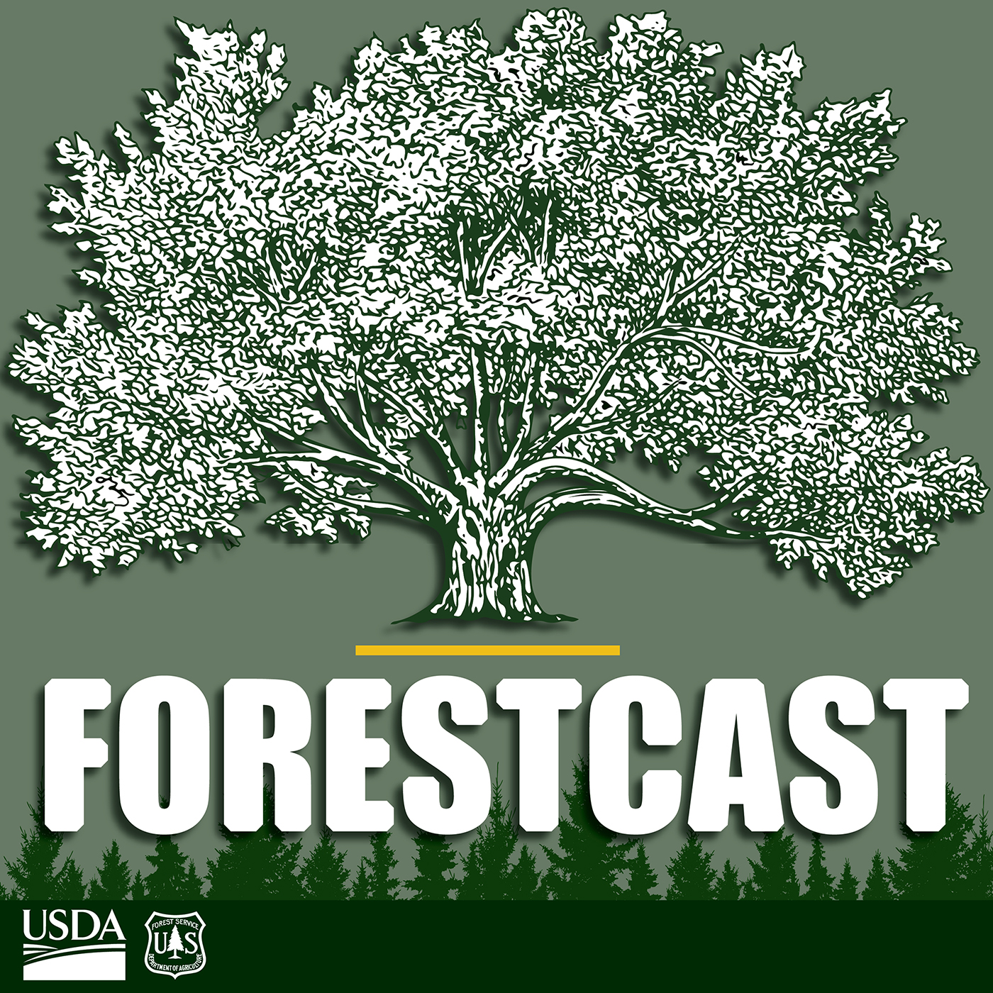 """Artwork for Welcome to """"Forestcast"""""""