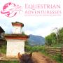 Artwork for 750 kilometer Endurance Race on Criollo Horses in Brazil