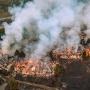 Artwork for Sonoma's Burning Problem