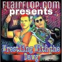 Artwork for Episode 113 - Shawn Michaels vs. Tatanka - WWF Intercontinental Championship - WWF WrestleMania IX