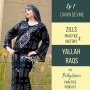 Artwork for Zills, History, and Practice with Dawn Devine