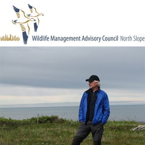 How we got here from there: Ivvavik, Herschel, and a brief history of the Wildlife Management Advisory Council (North Slope)