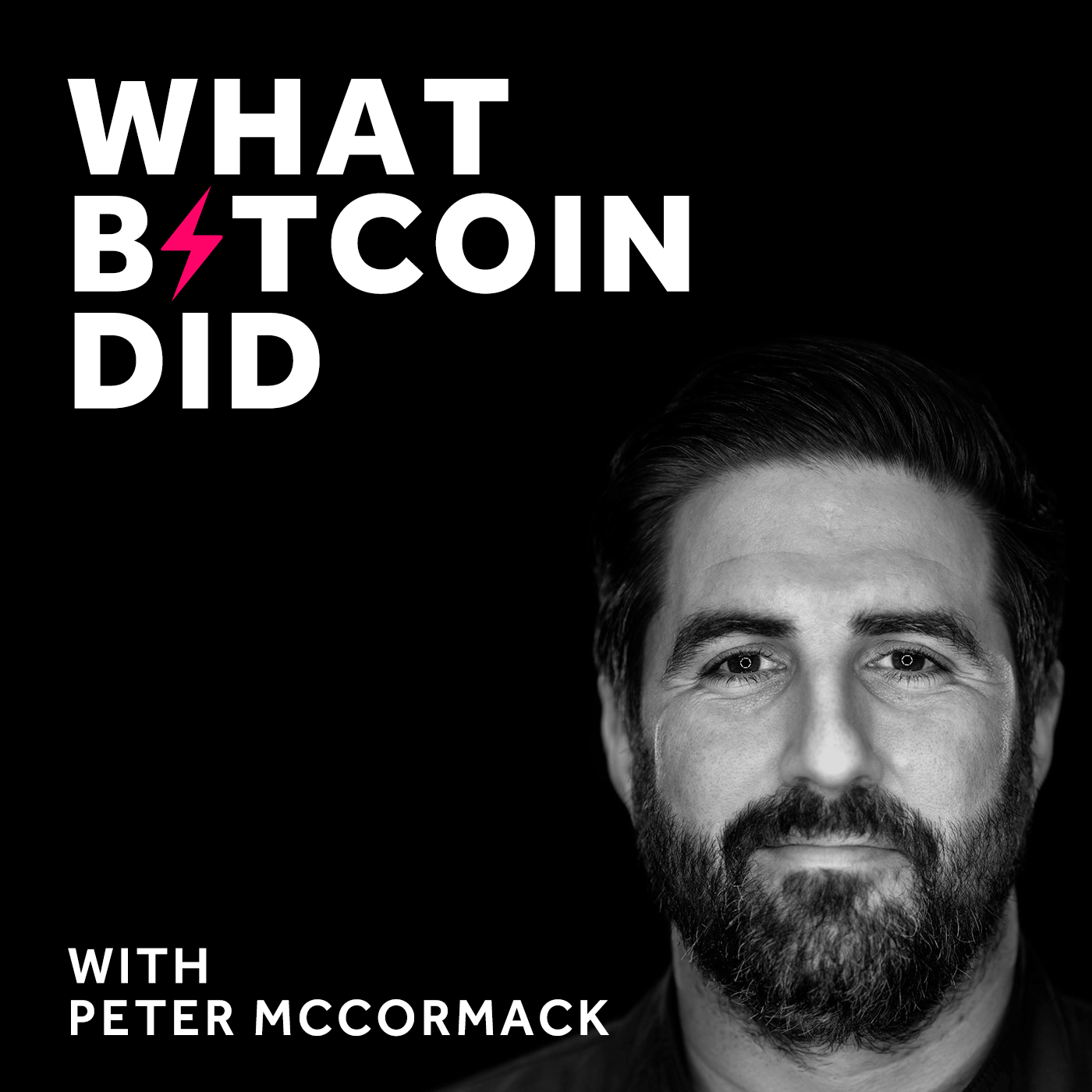 What Bitcoin Did show art