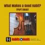 Artwork for S4-03: What Makes a Good Habit (Part Deux)