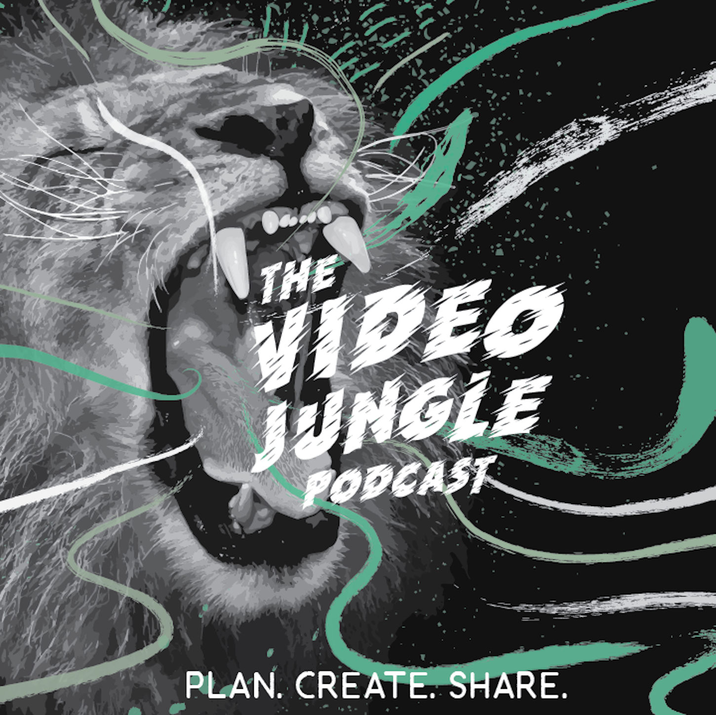 Artwork for The Video Village: Justin Andrews Co-Founder Animus Studios