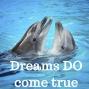 Artwork for 12-05-17 Dreams Do Come True