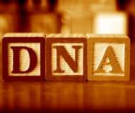 What If I know I Am a Carrier for a Genetic Disease?