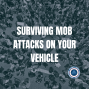 Artwork for Episode 153 - Surviving Mob Attacks on Your Vehicle