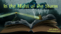 Artwork for In the Midst of the Storm {McNett}
