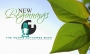 Artwork for New Beginnings: Income Outcomes Show - PPN Episode 607
