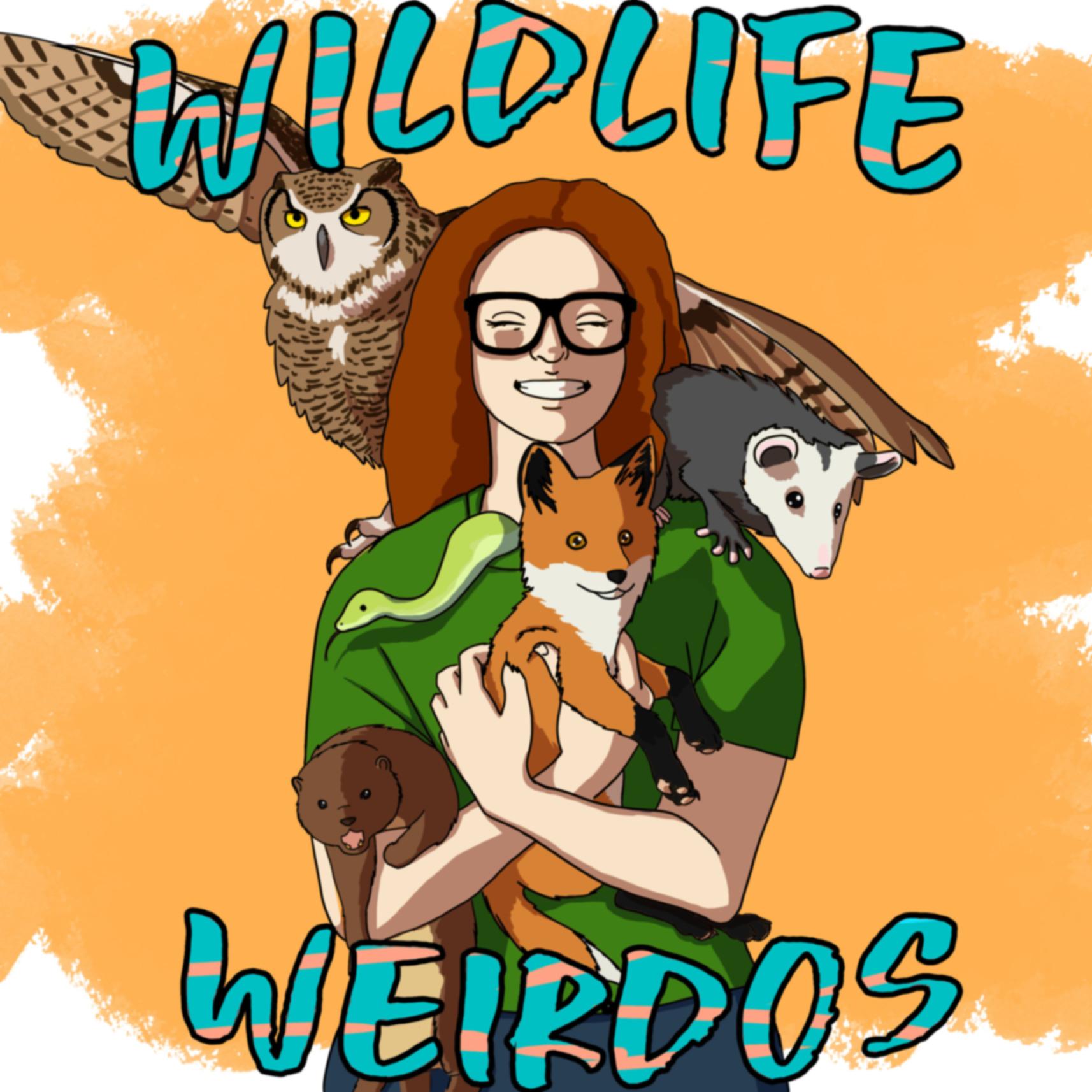 Wildlife Weirdos show art