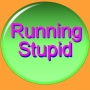 Artwork for Running Stupid XVII (Fritter Rides Again!)