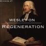 Artwork for Minisode 27: Wesley on Regeneration