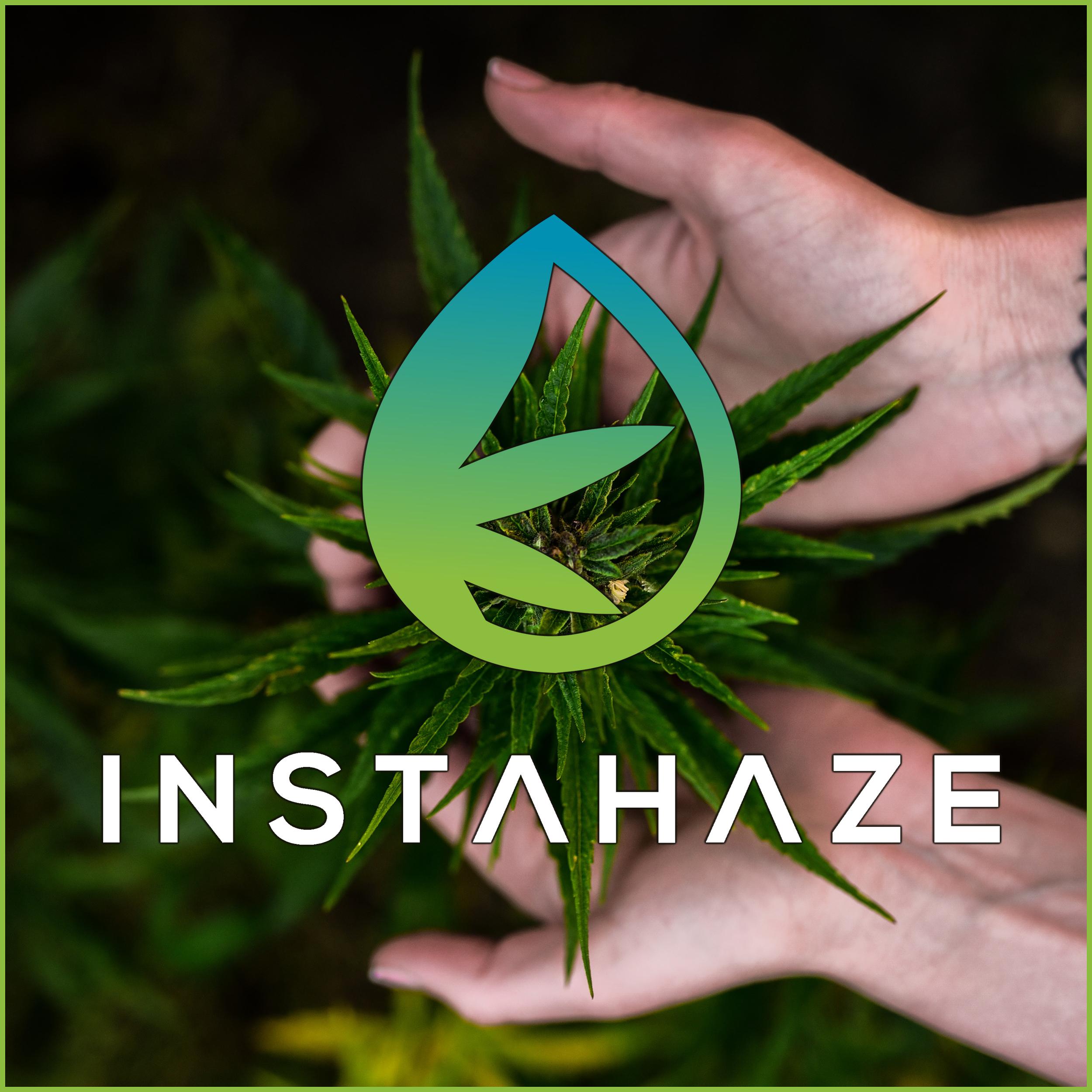 CBD, Cannabis und Hanf |Der InstaHaze CBD Podcast Deutschland show art
