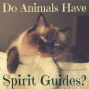 Artwork for 69: Do Animals Have Spirit Guides?