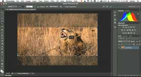 How to Make A Facebook Cover Photo in Photoshop CS6