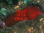 Artwork for Sample: BigFootage - Night of the Demon