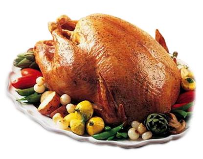 Happy Thanksgiving 11-25-10