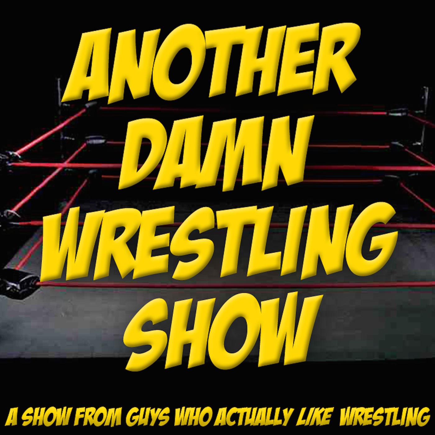 Another Damn Wrestling Show logo