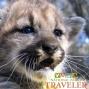 Artwork for National Parks Traveler: Santa Monica Mountains Wildlife Corridor