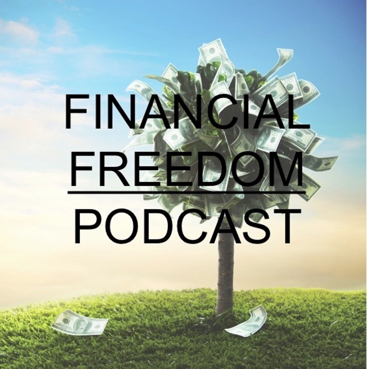 Artwork for Episode 82: 8 Habits That Can Hurt Your Financial Freedom